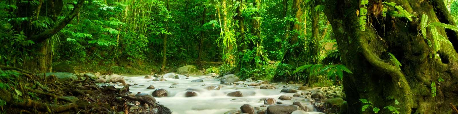 Costa Rica tem Grandes Cachoeiras Criadas Pelos Grandes Vulcões que Rodeão o País. Apartamentos, feriados, Luxo.